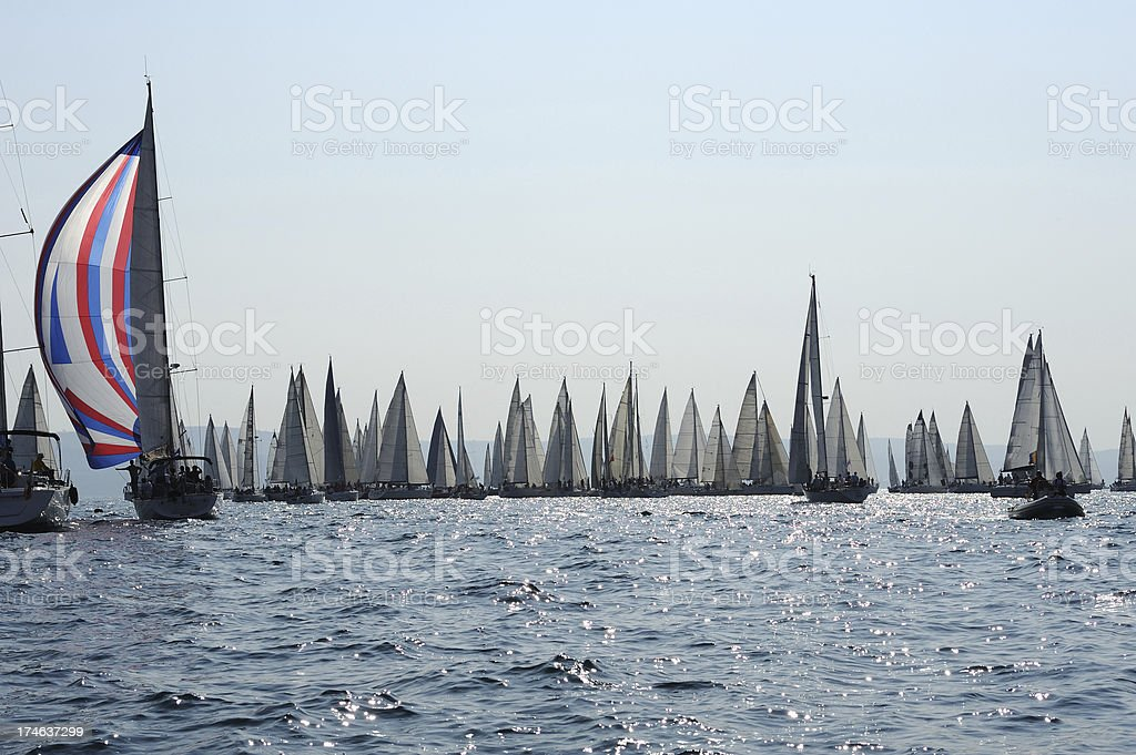 Regatta Barcolana royalty-free stock photo