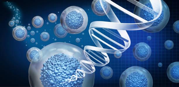 Regenerative Medicine stock photo