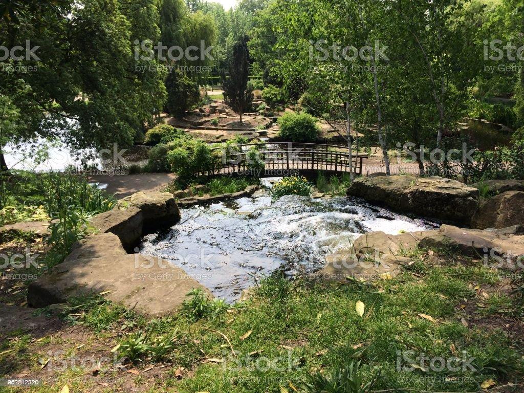 Regent's Park lake stock photo