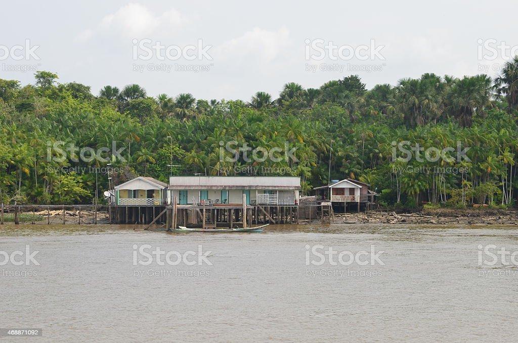 Região Amazônica do Brasil stock photo
