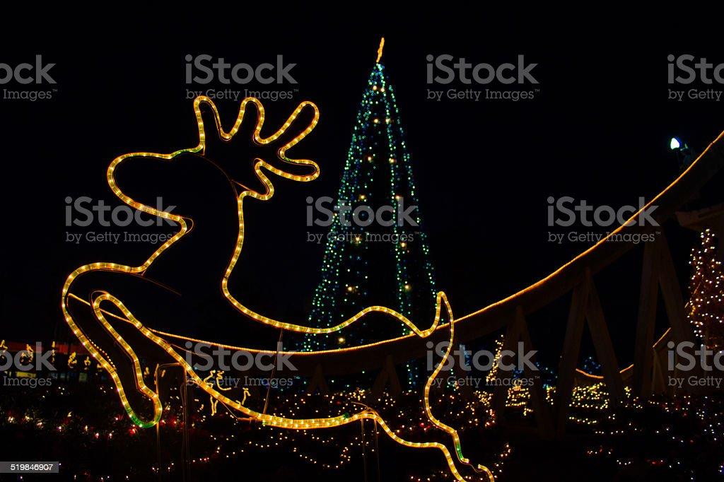 reindeer christmas stock photo
