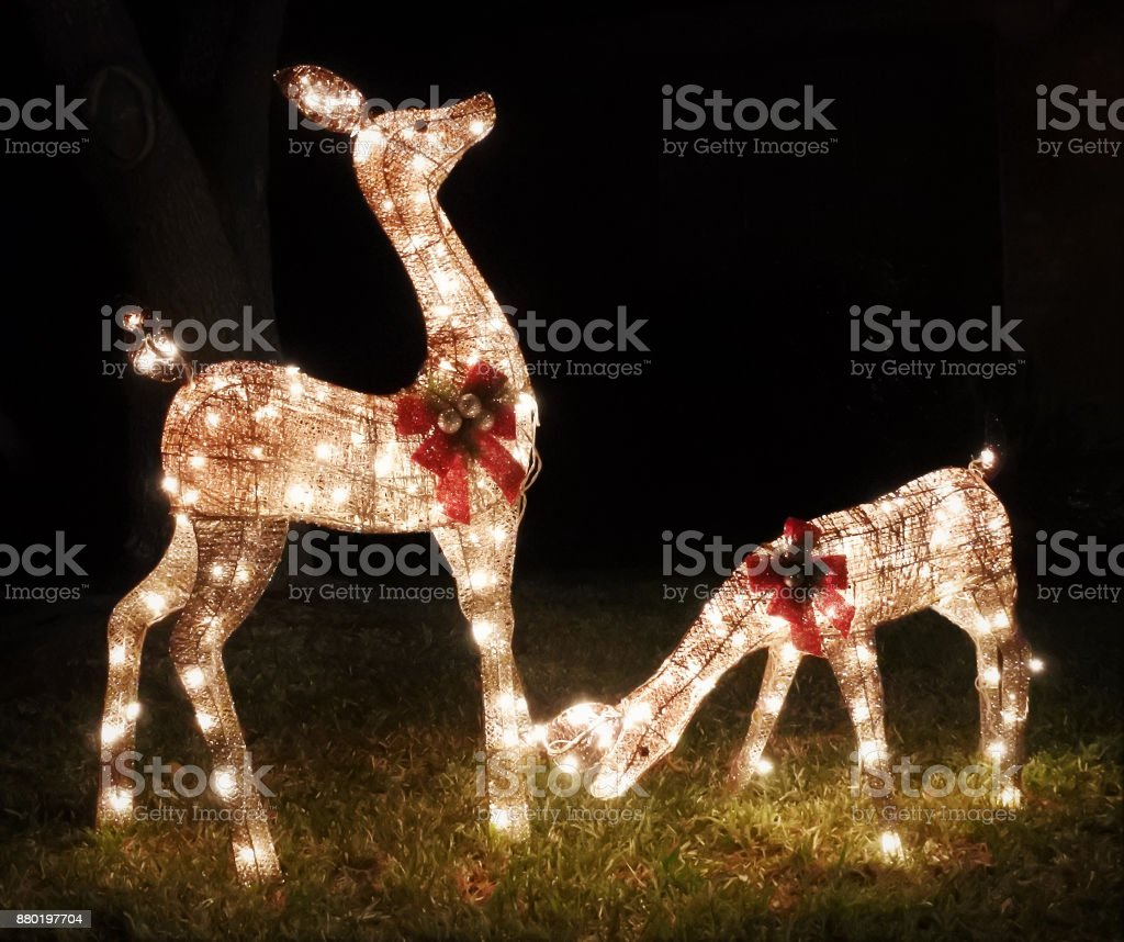 Reindeer Holiday Statues Glowing at Night stock photo