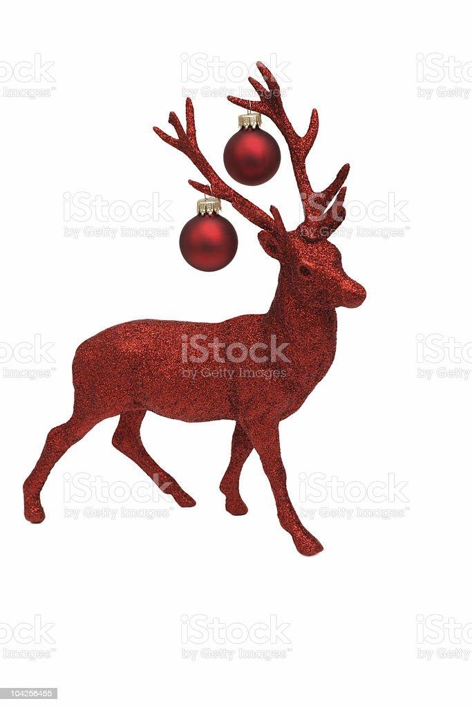 Reindeer Series royalty-free stock photo