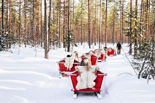 istock Reindeer sled in Finland Lapland winter 1058936770