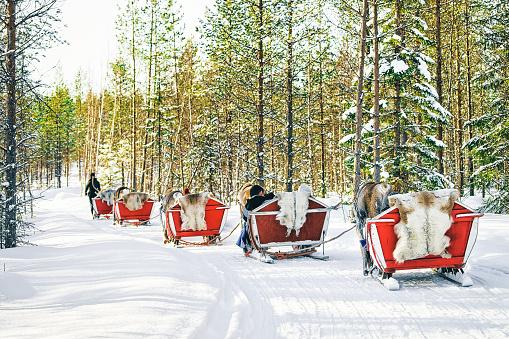 istock Reindeer sleigh in Finland Lapland in winter 1058936716