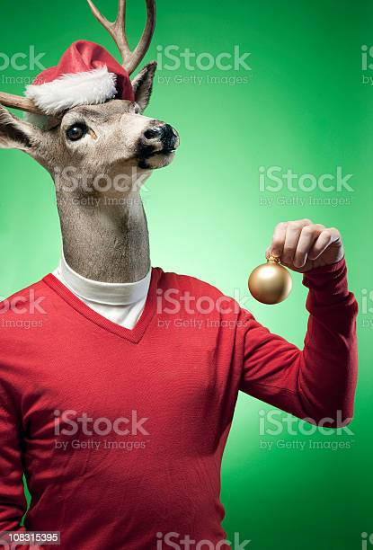 Reindeer the red sweater reindeer picture id108315395?b=1&k=6&m=108315395&s=612x612&h=r9hk1pcia0ph cavy kp9npdoyikchor0m nipb50gg=