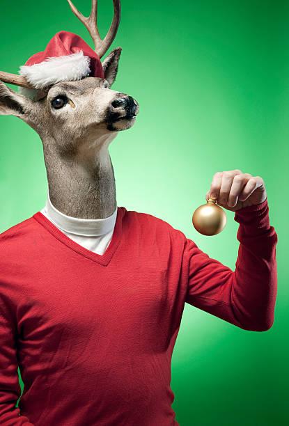 rudolph the red-pullover mit rentiermotiv - deko geweih stock-fotos und bilder