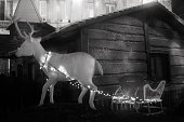 Reindeer with sleigh illuminated  figurines in front of a hut, black and white view, Christmas decorations. A Coruña townsquare, Galicia, Spain.
