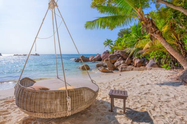 인도양의 열대 해변쁘고 안세 케를란(petite anse kerlan)에서 전형적인 화강암 암석과 야자수, 화강암 세이셸, 인도양의 군도 에서 휴식을 취하십시오. - 세이셸 뉴스 사진 이미지