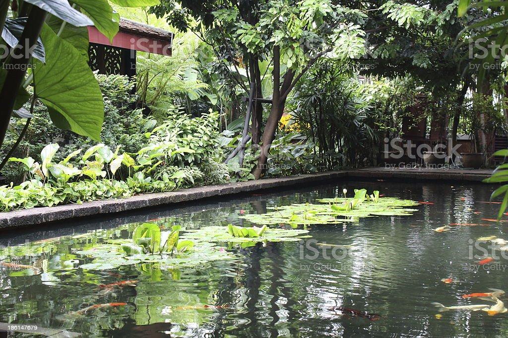 Расслабьтесь в бассейне воды для отдыха в спа-курорт Стоковые фото Стоковая фотография