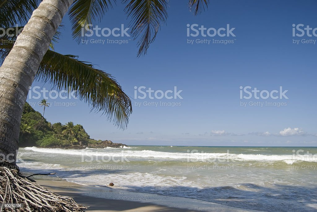 Relax time at the beach stock photo