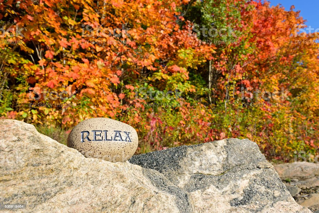 Relax with Autumn Trees stock photo