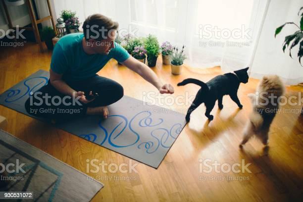 Relaxation with pets picture id930531072?b=1&k=6&m=930531072&s=612x612&h=zygdybqss9k v5 nje3ffcascdwleteja pxa8dcmgi=
