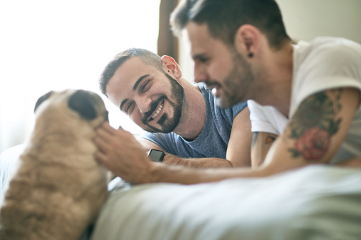 Relaxed Gay Men Spending Weekend Morning with Family Dog