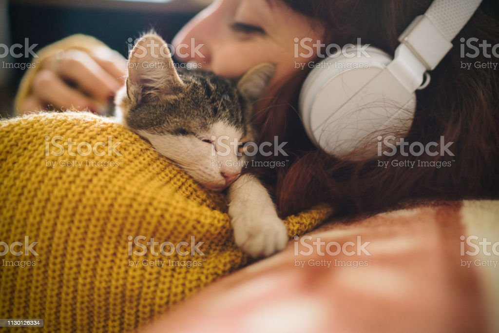 Relaxed girl with cat at home - Foto stock royalty-free di Abbracciare una persona