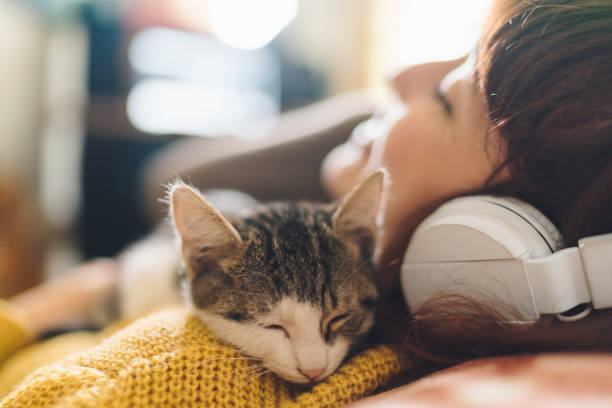 Relaxed girl with cat listening to music Gen Z girl with eyes closed hugging a cat and enjoying music domestic animals stock pictures, royalty-free photos & images
