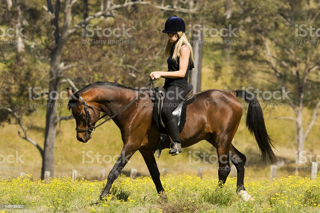 Relaxed horse rider in field stock photo
