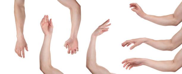 palma masculina relajada aislada sobre fondo blanco. múltiples imágenes. collage - brazo fotografías e imágenes de stock