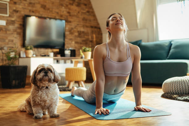 Relaxed woman with dog practicing Yoga in cobra pose at home. stock photo