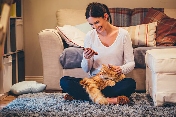Relaxing at Home Young woman sitting in her living room using her smartphone. She is petting her cat sat on her lap. undomesticated cat stock pictures, royalty-free photos & images