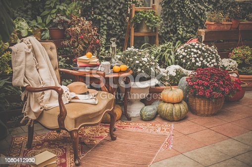 Comfortable armchair, and coffee table are placed among greenery, flowers, and decorative pumpkins in the back yard.