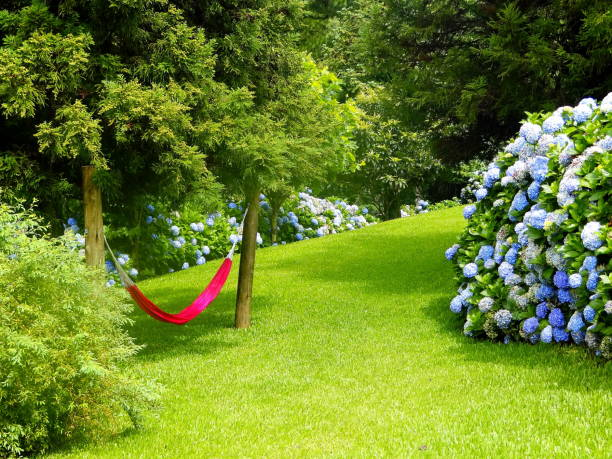 Relaxing green garden. stock photo