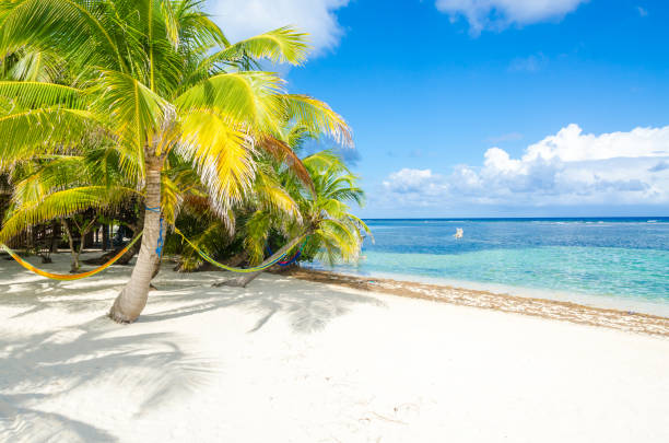 Relaxing on chair - South Water Caye - Small tropical island at Barrier Reef with paradise beach - known for diving, snorkeling and relaxing vacations - Caribbean Sea, Belize, Central America - foto stock