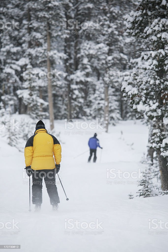 Relaxing Ski stock photo