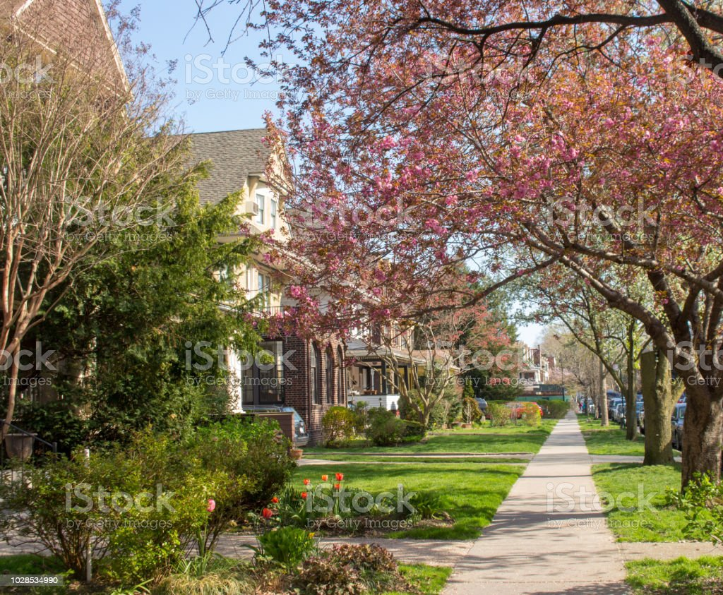 Relaxing Spring Street in Brooklyn stock photo