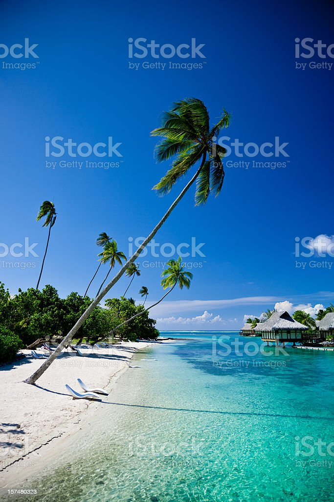 Relaxing Vacation on Dream Beach royalty-free stock photo