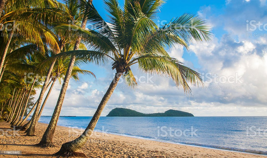 A relaxing view of a tropical beach with palm trees stock photo