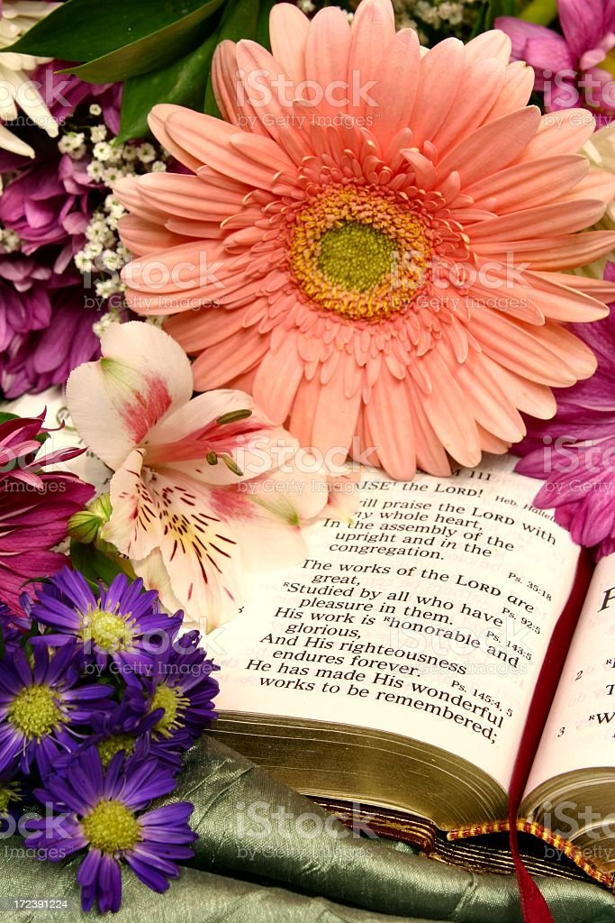Religious: Bible and springtime Flowers royalty-free stock photo