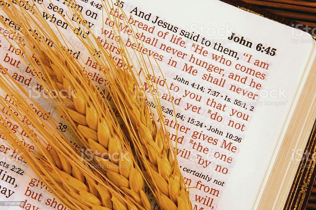 """Religious: I Am the Bread Bible scripture with wheat (horizontal) Open Bible showing Scripture from John 6:35 where Jesus is saying """"I am the bread of life"""" with 3 ripe wheat heads. Horizontal image would be good for Christian, religious or agriculture use. I also have this in a vertical format. Click on the Bible image below to view my other Christian images. Bible Stock Photo"""