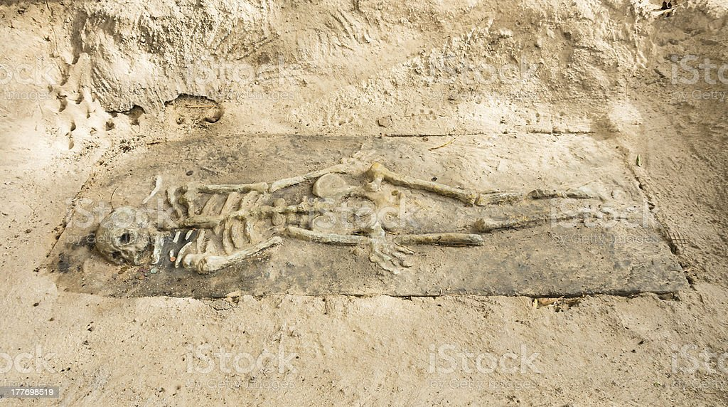 Remains of a Skeleton stock photo