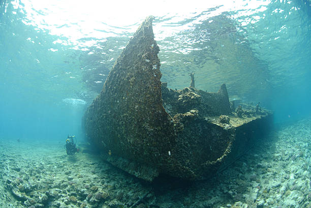 remains of the lara shipwreck - artificial reef stock pictures, royalty-free photos & images
