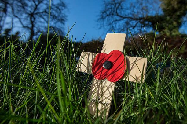 Remember the fallen heroes poppy day picture id521469658?b=1&k=6&m=521469658&s=612x612&w=0&h=aeu5nyokzadk1yhlmhspya3nhiyugxn vkf2gjcyas0=