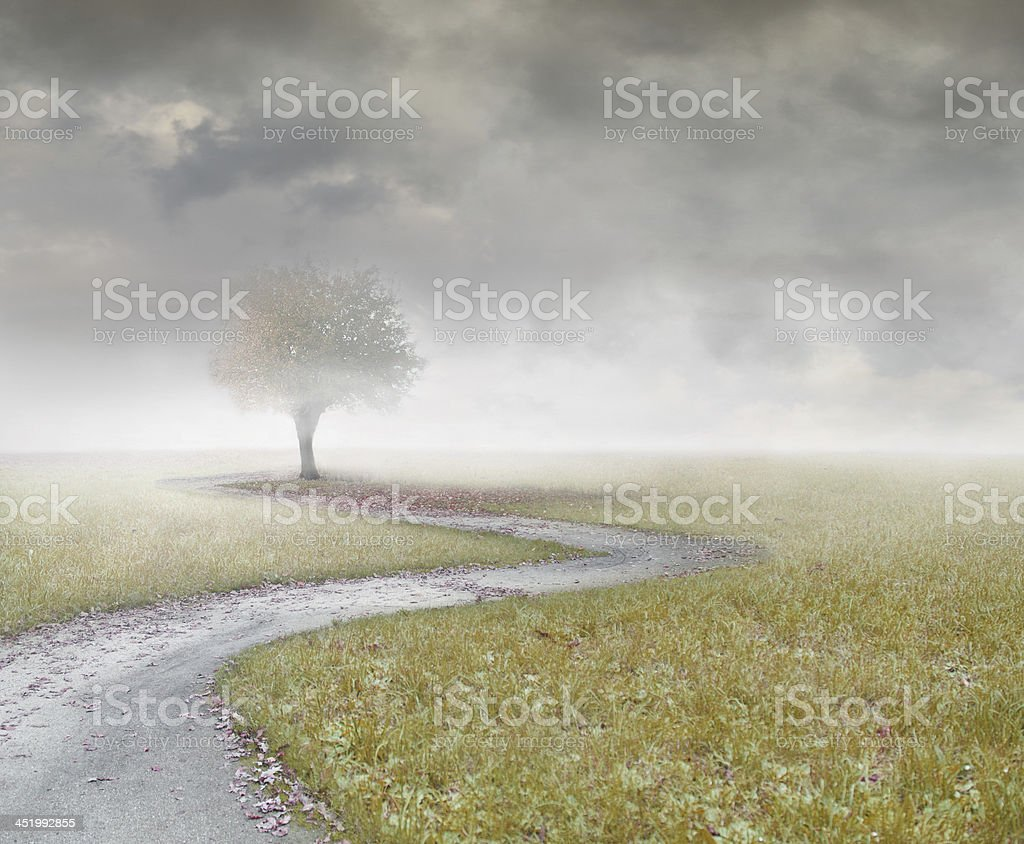 Remembering royalty-free stock photo