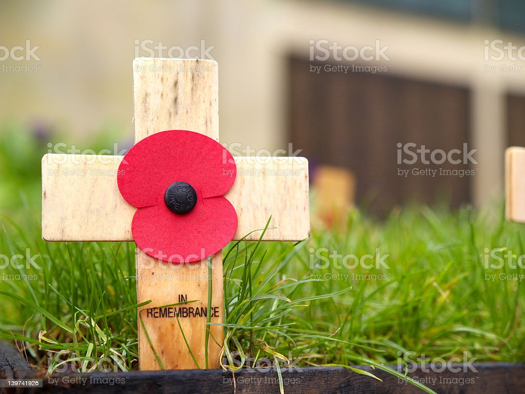 remembrance cross with a poppy stock photo