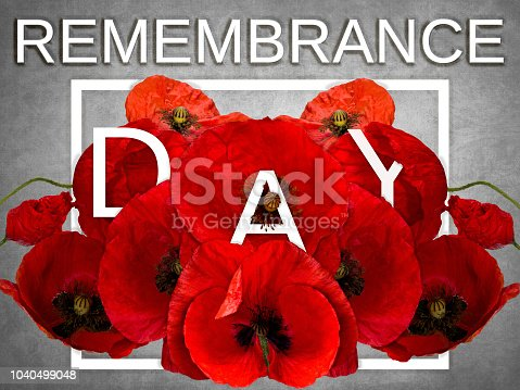 istock Remembrance day 1040499048