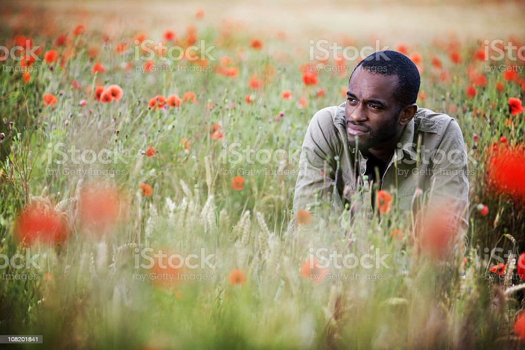 remembrance royalty-free stock photo