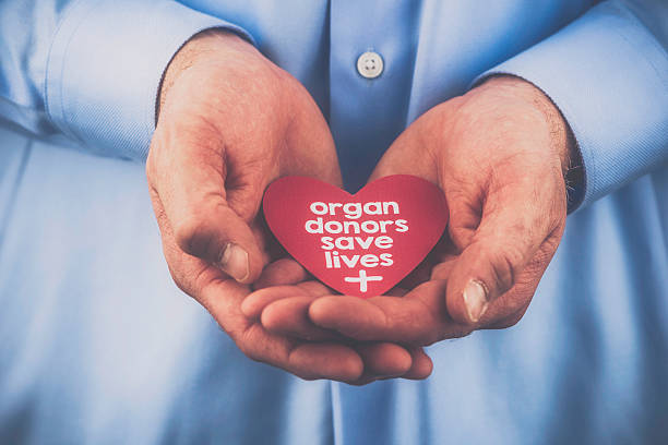 Reminder of importance of organ donation. Organ donors save lives. stock photo
