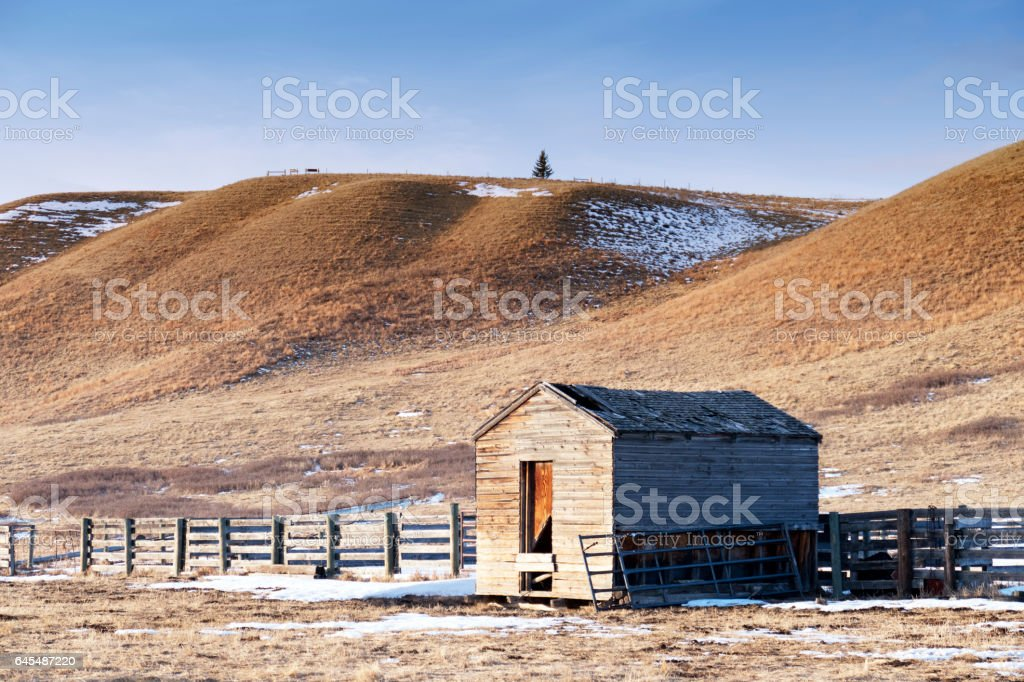 Remnants of old shed in the  Glenbow Ranch Provincial Park,a provincial park located in the Bow Valley , between the city of Calgary and the town of Cochrane in Alberta,Canada stock photo