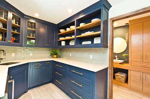 Remodeled Contemporary Bar Pantry Room