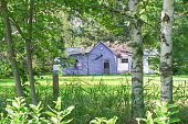 istock Remote abandoned and dilapidated house in rural Wisconsin framed by trees 1143576526