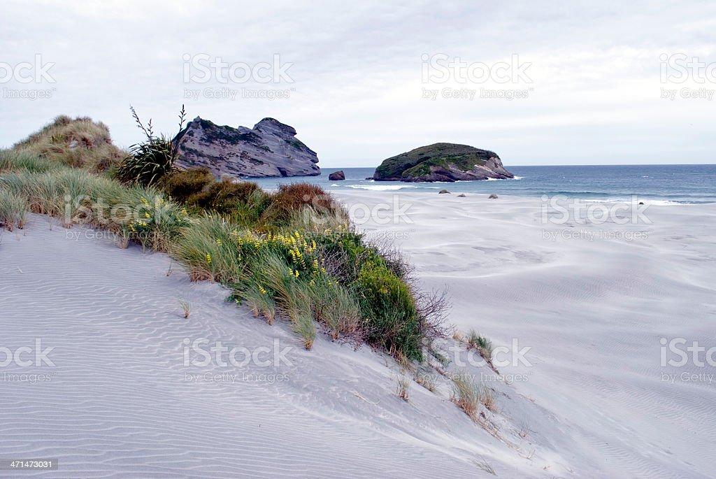 Remote Beach-scape, Wharariki Beach, Golden Bay, New Zealand royalty-free stock photo