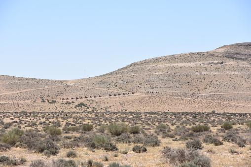 Abstract Rock formation at Boumediene in Tassili nAjjer national park, Algeria