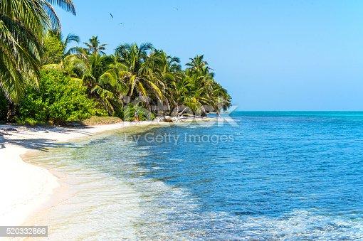 Idyllic white sand beach and coconut palm grove on a Caribbean island.
