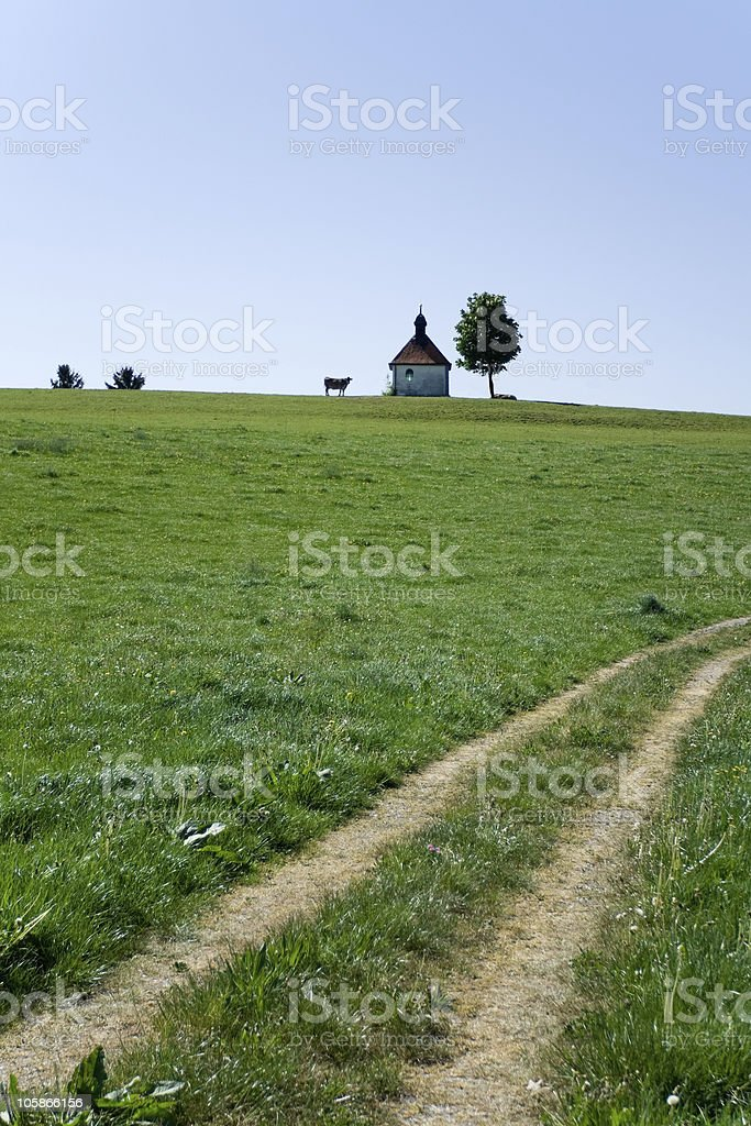 Remote cow, church, tree and rut on the green field royalty-free stock photo