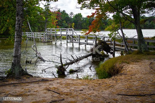 Wooden footbridge over a lake on a hiking trail in Ludington State Park in the Lower Peninsula of Michigan.