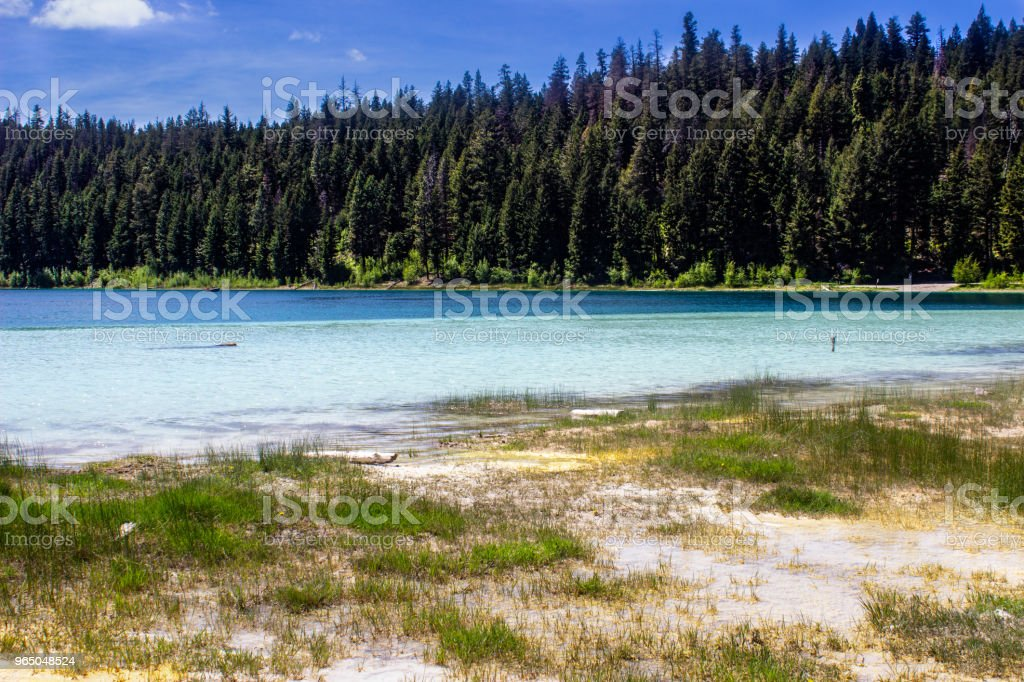 Remote Mountain Fly Fishing Turquoise Lake in the Forest zbiór zdjęć royalty-free